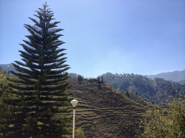 View from Pine Resort, Pithoragarh